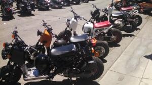 A group of Honda Ruckus's
